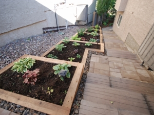 """Another look at the """"Tiered Cedar Planter"""" at our Hodgson landscape revitalization project"""