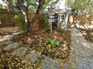 Westridge Project After the Leaves Came Down