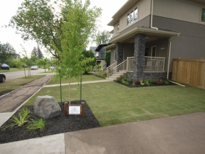 """A """"Rundle Feature Boulder"""" was incorporated on the corner of this front yard in order to deter pedestrian and cyclists from cutting across the corner"""