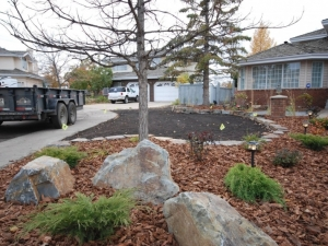 """Use of """"Kendall (dry stack) Natural Stone"""" was utilized to revitalize this yard in the Ogilvie Ridge area. We also utilized (medium) Wood Bark to provide ground cover. Wood Bark really helps to retain the moisture in the tree/shrub beds"""